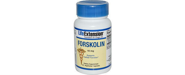 Life Extension Forskolin Review