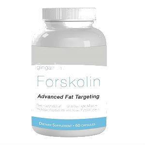 fat burning protein shake
