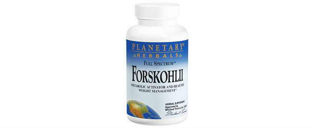 Planetary Herbals Forskohlii Review